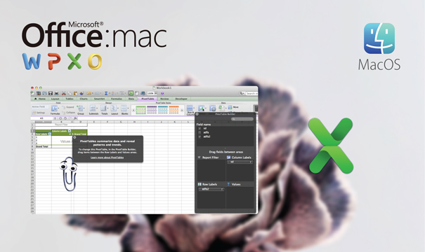 Mac için Microsoft Excel 2011