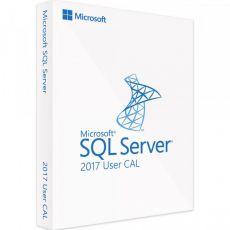 SQL Server 2017 Standard - User CALs, Client Access Licenses: 1 CAL, image