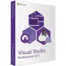 Visual Studio Professional 2017, image
