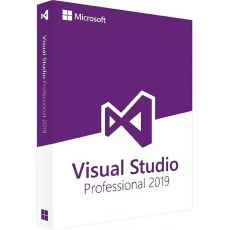 Visual Studio 2019 Professional, image
